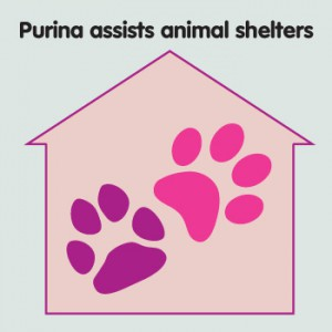 client-05-purina