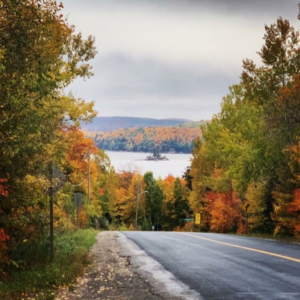 Haliburton Fall